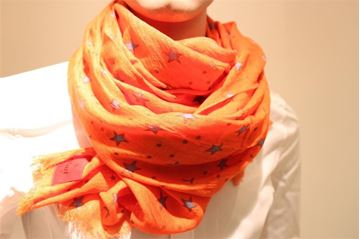 Picture of SCARF ERFURT MAN WOMAN 221013 ARANCIONE