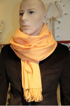 Picture of SCARF LES COPAINS MAN WOMAN LQH53 SALMONE