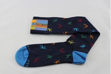 Picture of SOCKS GALLO MAN AP506211 BLU